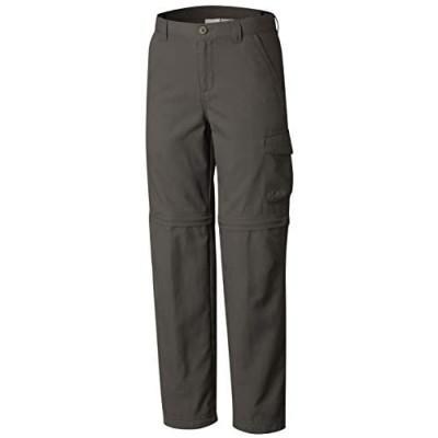 Columbia Sportswear Boys' Silver Ridge II Convertible Pant (Little Big Kids)
