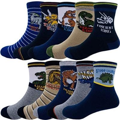 Kids Boys Cartoon Dinosaurs Pattern Sport Socks 10 Pairs