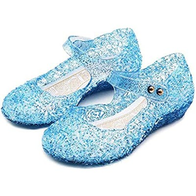 Amtidy Frozen Inspired Elsa Flats Mary Jane Dance Party Cosplay Shoes